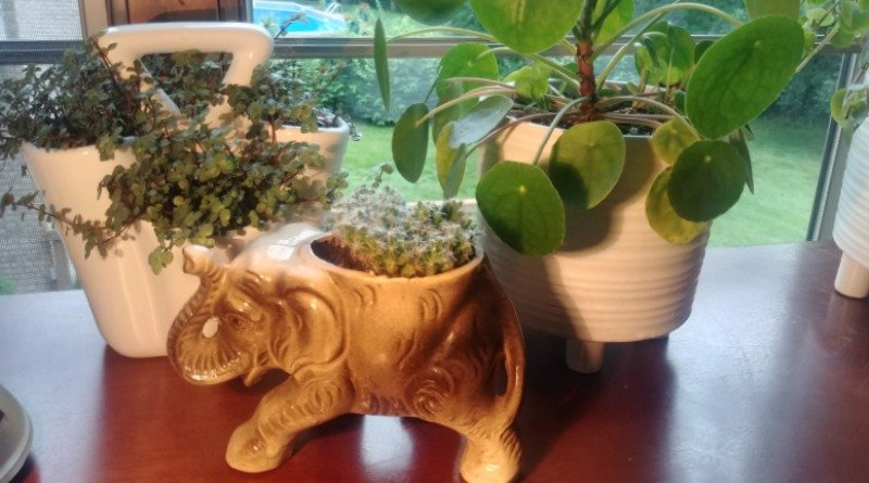 Vintage planters - My Little Elephant