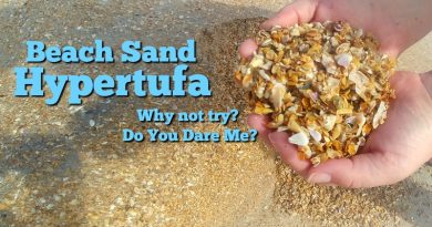 Beach Sand Hypertufa - I am willing to try the experiment