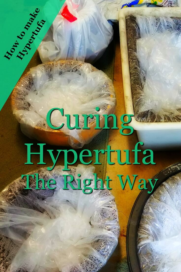 image for pinning Curing Hypertufa - 4 bowls covered with plastic & condensation