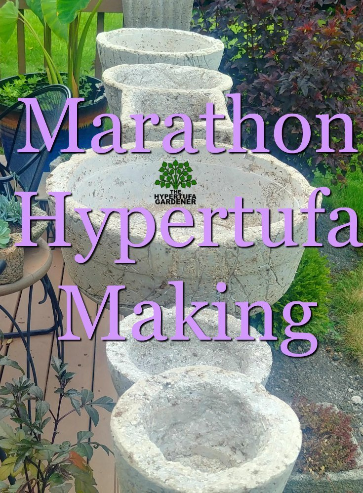 Marathon Hypertufa Making - All the mess at one time