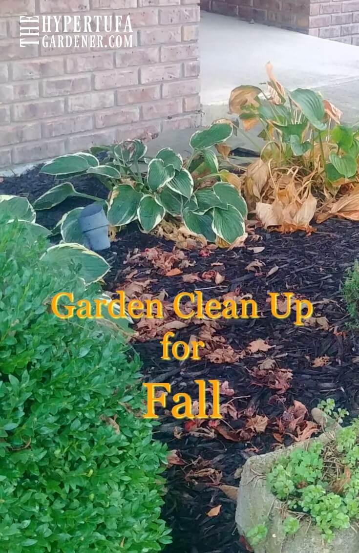 Garden Clean Up for Fall