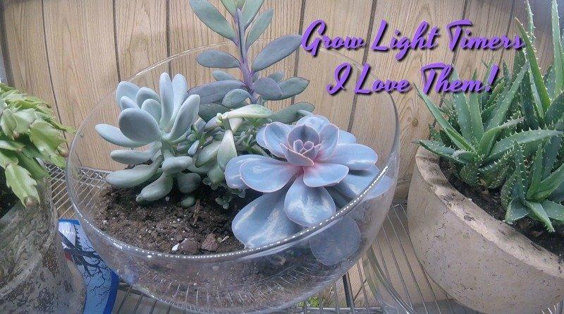 I love grow light timers