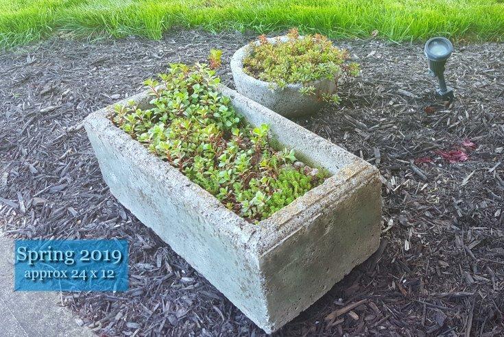 image of rectangular hypertufa planter