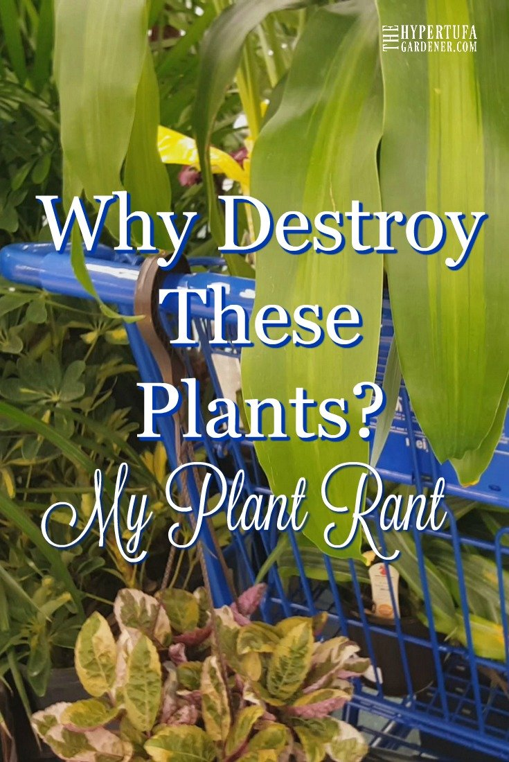 image of trashed plants with title why destroy these plants