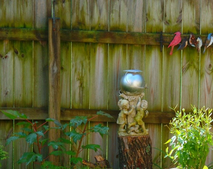 dark wooden privacy fence with gazing ball