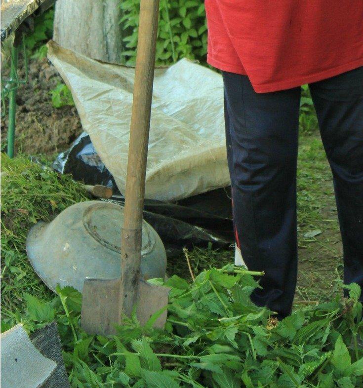 lady weeding a garden