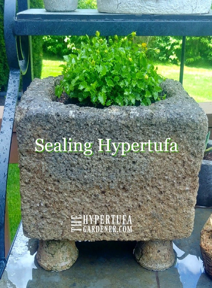 image of sealed hypertufa planted with campanula