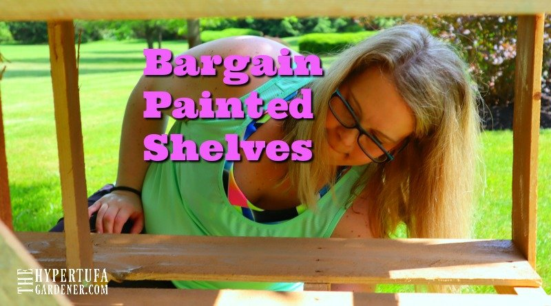 image of lady painting plant shelves