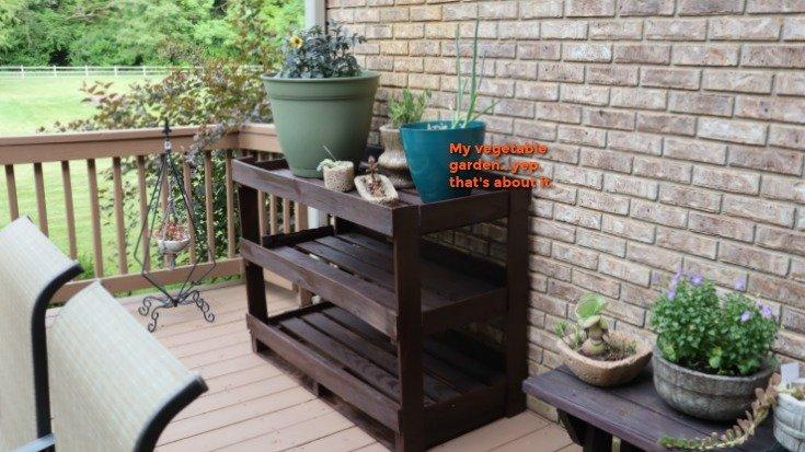 image of plant shelves painted dark brown
