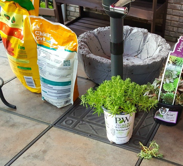 image of potting supplies - soil, grit, bowl, plants
