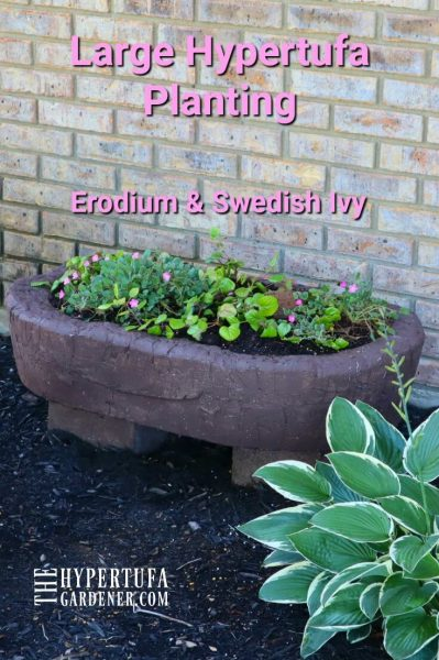 image of PIN for pinterest showing view of my largest hypertufa planter planted with houseplants