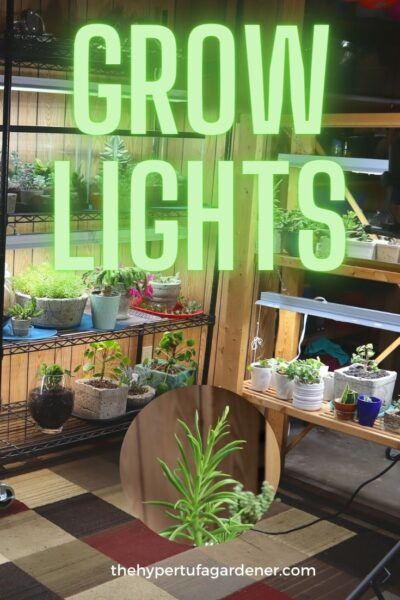 image of grow lights on shelving with lots of houseplants