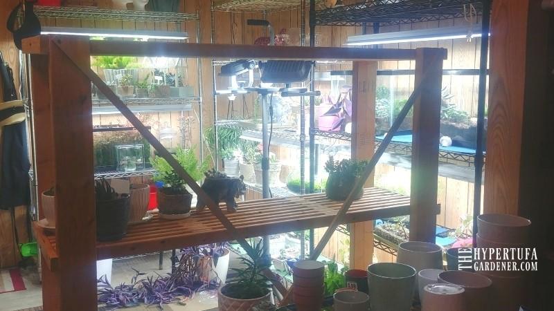 photo of indoor garden shelving with more grow lights