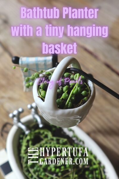 Image of Bathtub Planter & tiny basket suspended on pole/hook planted with String of Pearls