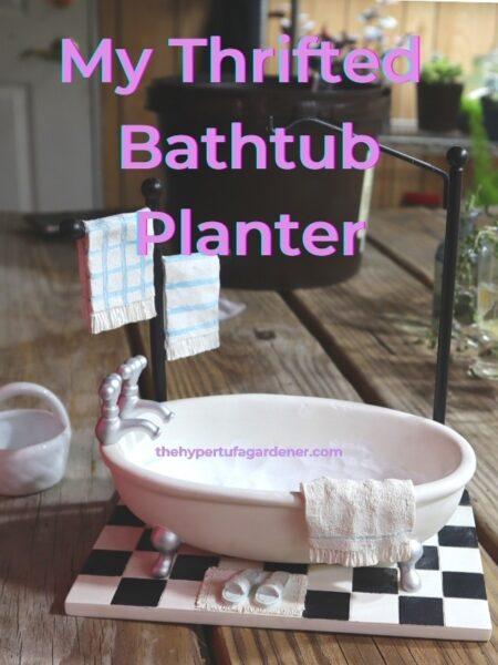 image of cute Bathtub Planter all ready to plant