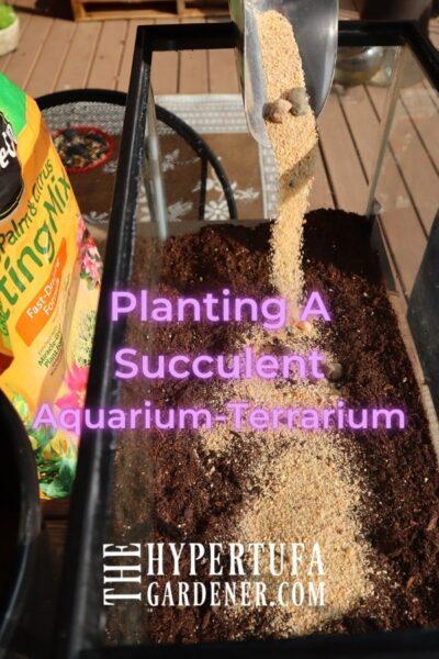 image pouring coarse sand into soil of terrarium aquarium